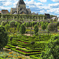 A Garden View At Chateau De Villandry by Dave Mills