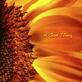 A God Thing-2 by Shevon Johnson