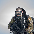 A Green Beret Emerges Onto Okaloosa by Stocktrek Images