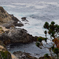 A Grey Day At Big Sur by Barbara Snyder