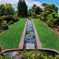 A Happy Garden by Mark Miller