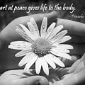 A Heart At Peace by Denise Irving