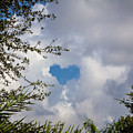 A Heart In The Sky by Ronald Kotinsky