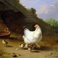 A Hen With Her Chicks by Eugene Joseph Verboeckhoven