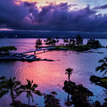 A Hilo View by Christopher Holmes