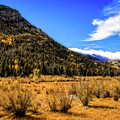 A Hint Of Fall by Jon Burch Photography