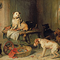 A Jack In Office by Sir Edwin Landseer