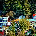 A Juneau Hillside  by Bob Lynn