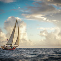 A Life At Sea by Michael Tigue