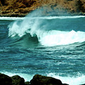 A Little Wave Action by Patricia Griffin Brett