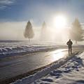 A Lonely Winter by Gabriela Insuratelu