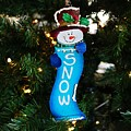 A Long Snow Ornament- Horizontal by Michiale Schneider