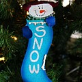 A Long Snow Ornament- Vertical by Michiale Schneider
