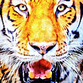 A Look Into The Tiger's Eyes Large Canvas Art, Canvas Print, Large Art, Large Wall Decor, Home Decor by David Millenheft