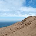 A Lot Of Sand by Linda Kerkau