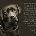 A Loving Dog by Kim Mobley