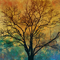 A Magnificent Tree by Peter Awax