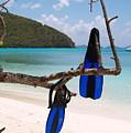 A Maho Bay Snorkel by Richard Mansfield
