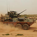 A Marine Corps Light Armored Vehicle by Stocktrek Images