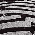 A Maze by HazelPhoto