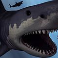 A Megalodon Shark From The Cenozoic Era by Mark Stevenson