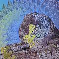 A Mossy Rock  by Jeff Swan