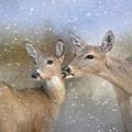 A Mother's Love Deer Art by Jai Johnson