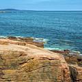 A Natural Seawall by John M Bailey