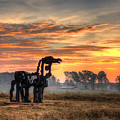 A New Day The Iron Horse by Reid Callaway