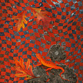 A Newt Day by Linda L Doucette