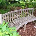 A Nice Sit 2 by Jean Haynes