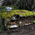 A Non Rolling Car Gathers Some Moss by Rob Hawkins