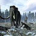 A Pack Of Dire Wolves Crosses Paths by Walter Myers