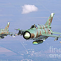 A Pair Of Bulgarian Air Force Mig-21bis by Daniele Faccioli