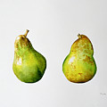 A Pair Of Pears by Alison Cooper