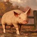 A Pig In Autumn by Daniel Eskridge