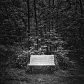 A Place To Sit by Scott Norris
