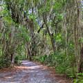 A Pleasant Stroll by John M Bailey