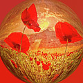 A Poppy Kind Of Morning Circles by Debra and Dave Vanderlaan