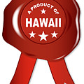 A Product Of Hawaii by Bigalbaloo Stock