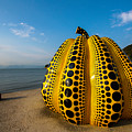 The Pumpkin Of Naoshima by Peteris Vaivars