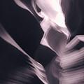 A Purple Dream by Jonathan Nguyen