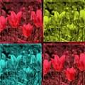 A Quadruple Of Tulips by Susanne Van Hulst