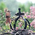 A Rainy Summer Day by Trina Ansel