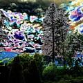 A Razzle Dazzle Sky by Will Borden