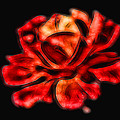 A Red Rose For You 2 by Mariola Bitner