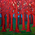 A Red Wood - Sold by Paul Anderson