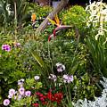 A Riot Of Flowers by Lorraine Devon Wilke