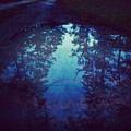 A River Runs Through It by Ishtar Stillmank