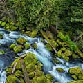 A River's Path by Belinda Greb